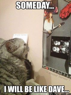 Look at the title man!) they are just memes of Dave and shit COMPL… # Humor # amreading # books # wattpad Heavy Metal Funny, Heavy Metal Rock, Stupid Memes, Funny Memes, Dankest Memes, Metallica Art, Metallica Funny, Metal Meme, Some Jokes