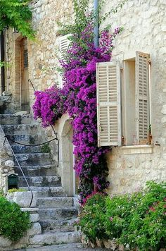 Stairway, Provence, France - Three of my favorite things in one picture (a window, purple flowers, and stairs--hard to know how to categorize it! Stairway To Heaven, Cultural Architecture, Beautiful World, Beautiful Places, Beautiful Flowers, France Photos, Provence France, Provence Style, South Of France