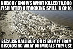Halliburton was going bankrupt before the invasion of Iraq by GW Bush. Now, it's a billion dollar monster.