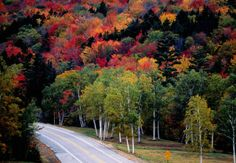 Mount Washington Auto Road, New Hampshire and 8 more scenic drives across America Best Places To Vacation, Places To Visit, Mount Washington Auto Road, Drive Across America, Vacation Planner, Vacation Ideas, Pacific Coast Highway, Greatest Adventure, New Hampshire