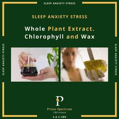 Whole Plant Extract Stress And Anxiety, Cbd Hemp Oil, Cannabis Plant, Our Body, Ireland, Wax, Core, Website