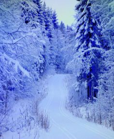 Winter Road, Snow Days, Framed Prints, Canvas Prints, Spiritual Growth, Famous Artists, One Pic, Norway, Tractors