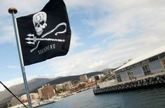 Sea Shepherd Ships Return Home After Saving Over 750 Whales: http://onegr.pl/1iUOP5s