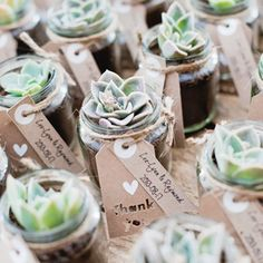 Succulent Wedding Ideas: We love these DIY succulent favors! Wedding Favour Jars, Rustic Wedding Favors, Wedding Gifts, Wedding Decorations, Wedding Day, Diy Wedding Souvenirs, Natural Wedding Favors, Garden Wedding, Wedding Plants
