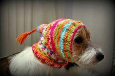 Pyhäkoiria ja pientilan pitoa: Koiran neule ja pipo