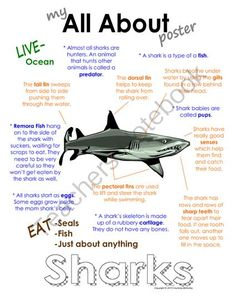 "My All About Sharks Book - Ocean Animal Unit Study from Courtney McKerley on TeachersNotebook.com (9 pages)  - This ""All About Book"" will be a fun addition to your classroom and lesson on sharks. This packet can be used along with books specific to the animal or it can be used on its own. Other animals you will see in the ocean animal series include the sea turtle"