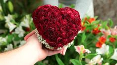 Nothing says I Love You like heart and roses. Male and female hands with Valentines Day rose heart bouquet.