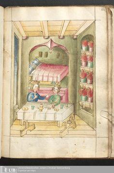 Bellifortis Frankfurter Universitätsbibliothek Ms. germ. qu. 15 , Vorbesitzer, Graf Philipp von Hanau, Familie Holzhausen ... um, ... those look like houseplants ......: