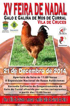 #Fiesta del Gallo y gallina de corral, Vila de Cruces, #Pontevedra, #Galicia