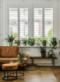 Shutters jaloezieën op maat - perfection in every detail White Shutters, Living Room Inspo, Stylish Living Room, Interior, Home, Interior Shutters, Window Decor, Diy And Home Improvement, Home Interior Design