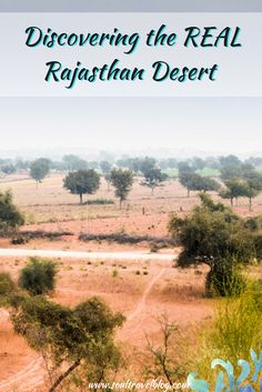 HACRA Desert Stay Rajasthan Experience