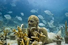 MUSA, an underwater sculpture museum in Cancun. Click on photo for some incredible photos. Click here to read article that gives great details on it's eco-system http://www.tellurideinside.com/2012/05/earth-matters-underwater-art-helps-save-reefs.html