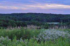 Newport State Park – Ellison Bay, Wisconsin