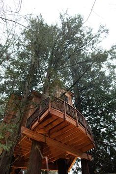 season 2015 pete nelson tree houses images | view of the treehouse at Bear Creek Studio outside Seattle.