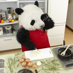 Cooking for you Cute Cats And Dogs, Cool Pets, Animals And Pets, Baby Animals, Panda Love, Cute Panda, Cute Images For Dp, Panda Wallpapers, Ideas