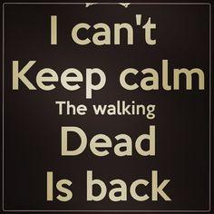 the walking dead   Tumblr