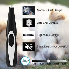 AngFan Pet Clippers Cat Shaver, Professional Hair Grooming Clippers Detachable Blades Cordless Rechargeable with Scissor, Guards for Small Medium Large Dogs Cats and Other Pets Dog Grooming Clippers, Professional Hairstyles, Edge Design, Large Dogs, Pet Supplies, Blade, Dog Cat, Pets, Top