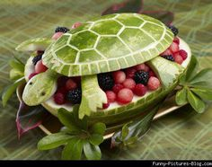 watermelon for summer fruit salad in turtle - cute display