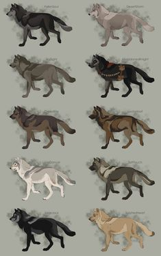 Semi-Realistic Wolf Adoptables - CLOSED by Therbis on DeviantArt