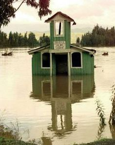 essay on flood and its effects