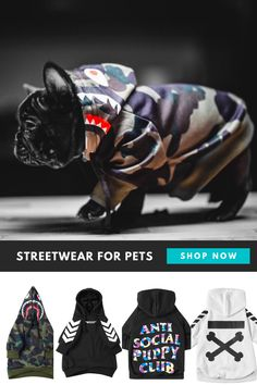 Dog Discover Streetwear styles to keep your dog comfy & fresh Cute Puppies, Dogs And Puppies, Hamster, Cute Funny Dogs, French Bulldog Puppies, Dog Wear, Tier Fotos, Dog Hoodie, Dog Coats
