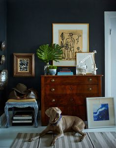 Pets - the best home decor accessory