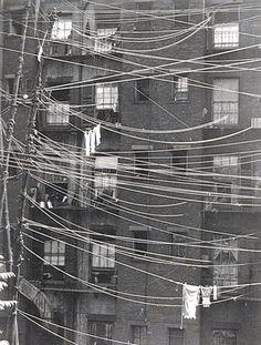 """Ralph Steiner - """"Untitled [Clotheslines]"""" 1923"""
