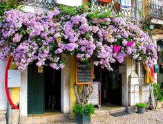 Lisboa... uma surpresa em cada recanto.  Joana Gomes