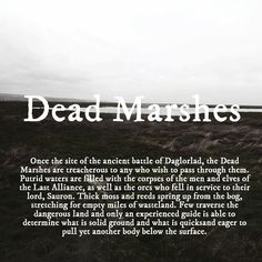 Dead Marshes; this is the chapter I was up to when, at nine years old, we had to write a book report on the chapter of whatever book we were reading. My teacher was a bit concerned. I don't think she'd even read LOTR herself haha ;)