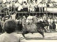 Toro de San Juan
