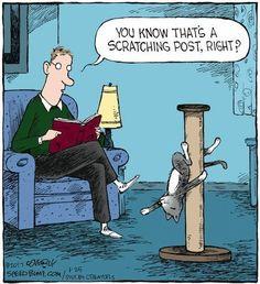 Pole dancing........Evil!!! #poledancingexercise
