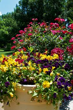 Fort Worth Botanic Garden. Fort Worth, Texas. Oh The Places You'll Go, Places To Visit, Only In Texas, Dallas County, Flower Containers, Loving Texas, Sea To Shining Sea, Fort Worth, Botanical Gardens