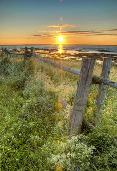 Fence Along The Shore Photograph by Philippe Widling - Fence Along The Shore Fine Art Prints and Posters for Sale