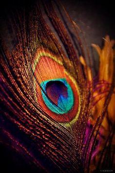 Shree Krishna Wallpapers, Lord Krishna Hd Wallpaper, Ganesh Wallpaper, Lord Krishna Wallpapers, Arte Krishna, Krishna Flute, Radha Krishna Photo, Krishna Songs, Radha Krishna Pictures