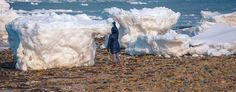 """""""Icebergs"""" wash ashore (Via Dapixara/Yahoo News) In what's called a """"once-in-a-generation"""" event, several giant chunks of ice wash up and remain on the shore. Historic winter of 2015"""