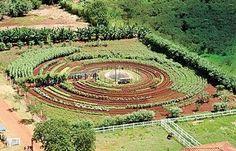 Mandala avec de l'eau au centre