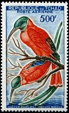 Merops Nubicus (Northern carmine bee-eater). Stamp by Republic of Chad, circa 1961