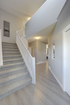 Carpet Staircase, Staircase Remodel, Modern Staircase, Wide Plank Laminate Flooring, Best Flooring, Cheap Rustic Decor, Home Design Living Room, Cute Home Decor, Carpet Design