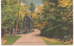 Pocono Mountains Pennsylvania Pocono Mountains, Free Business Cards, 50 States, Vintage Postcards, Wonderful Places, Vacation Spots, Pennsylvania, Places Ive Been, The Past