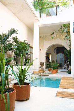 Resultado de imagen para jardin interior colonial cartagena
