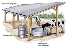 Rinder Stall, Horse Shelter, Goat Shelter, Homestead Farm, Future Farms, Cattle Farming, Mini Farm, Backyard Farming, Farms Living