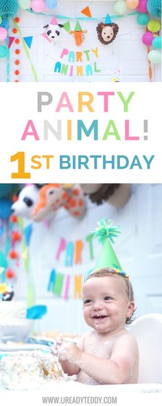 Teddy's Party Animal themed first birthday party. DIY Party Decorations. Paper Banner Cake Topper, Funfetti, Bright Colorful Decor, Photobooth signs, Tissue Paper Party Hats, Bubble Party Favors, Panda Bear Invitations, Zoo Bday, Bear Party