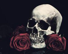 #skulls,  crocodile leather belts, genuine leather, skin, snake skin, skulls, luxury shopping, crocodile accessories, crocodile bracelets, woman`s belts, jeans belts, rocker style, men´s belts,  Plácido de la Rosa, fashion, python skin, ring rock, gürtel, buckles, http://shop.placidodelarosa.com/en/