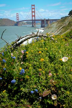 San Francisco vistas and panoramic views #SanFrancisco #SanFranciscoLandmarks