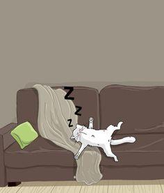 cat sleeping / chat dort sur canapé