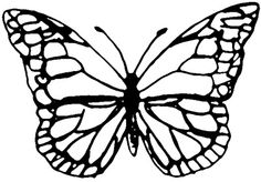 Butterfly template for shrink plastic