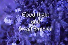 Bon Nuit
