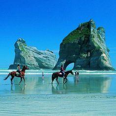 I need vitamin S E A emoji horse riding in New Zealand