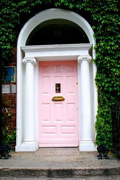 i would love this door with pink climbing roses!