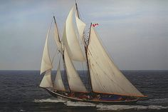 And probably the greatest tribute to Bluenose — Bluenose II, a ship built to commemorate the great Bluenose and the subject of Part II in my series about the tall ships of Lunenburg Norfolk Broads, Classic Yachts, Old Boats, Motor Boats, Tall Ships, Nova Scotia, Sailing Ships, Cruise, Canada